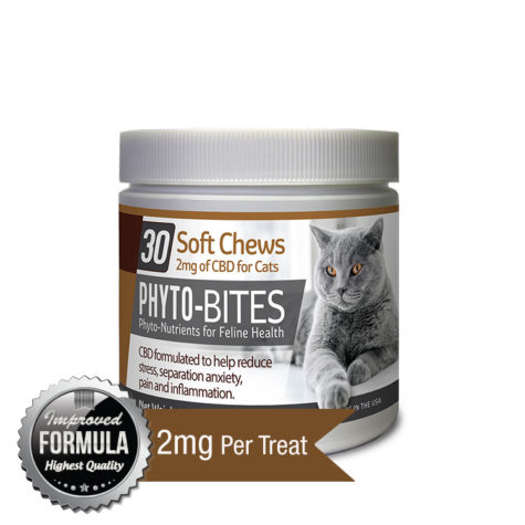 Phyto Bites CBD soft chews for cats